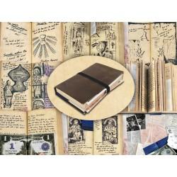 Indiana Jones Graltagebuch